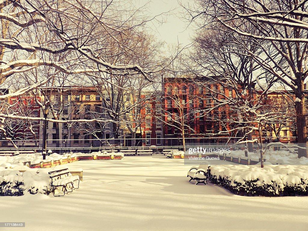 New York Winter - Tompkins Square Park