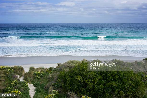 New Zealand Beach Landscapes