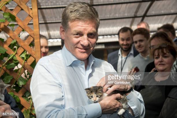 New Zealand Prime Minister Bill English holds a kitten at Kitten Inn during a National Party campaign in Wellington on September 15 2017 New...