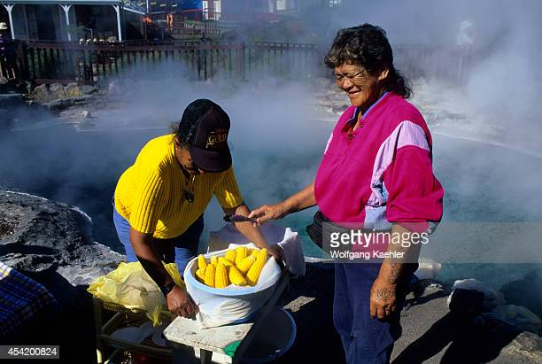 New Zealand Rotorua Whakarewarewa Thermal Area Maori Women Cooking Corn In Hot Spring