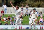 New Zealand seamer Doug Bracewell celebrates taking the final wicket while Australian batsman David Warner looks on during New Zealand's victory over...