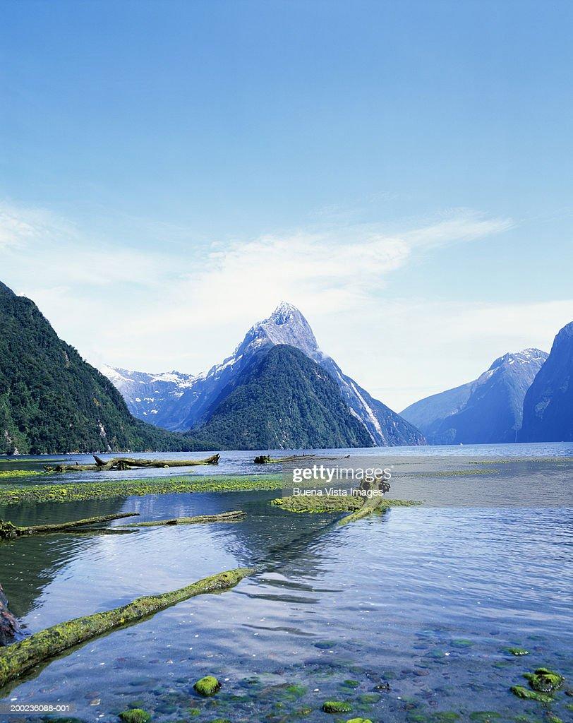 New Zealand, South Island, Milford Sound : Stock Photo