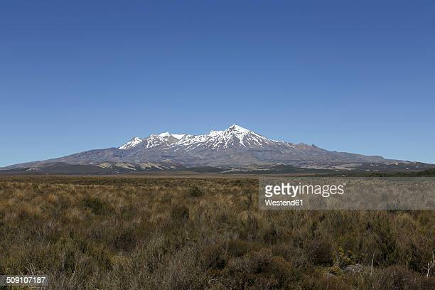New Zealand, view to Mount Ruapehu
