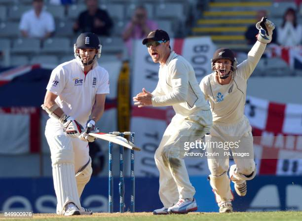 New Zealand's Brendon McCullum and BradleyJohn Watling celebrates as England's James Anderson is caught behind by New Zealand's Ross Taylor during...