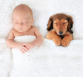 Sleeping newborn baby alongside a dachshund puppy.
