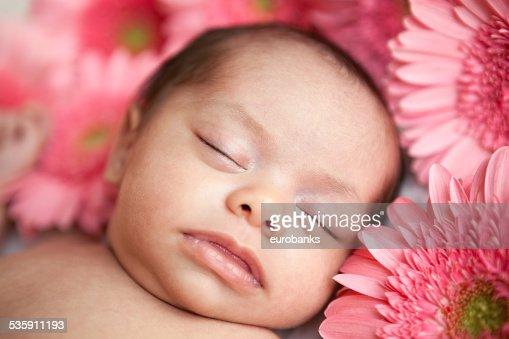 Recién nacido bebé niña durmiendo con daisies : Foto de stock