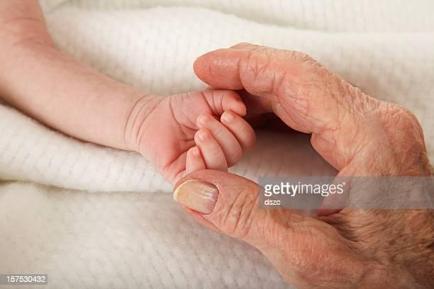 Nouveau-né bébé tenant arrière grand-mère main