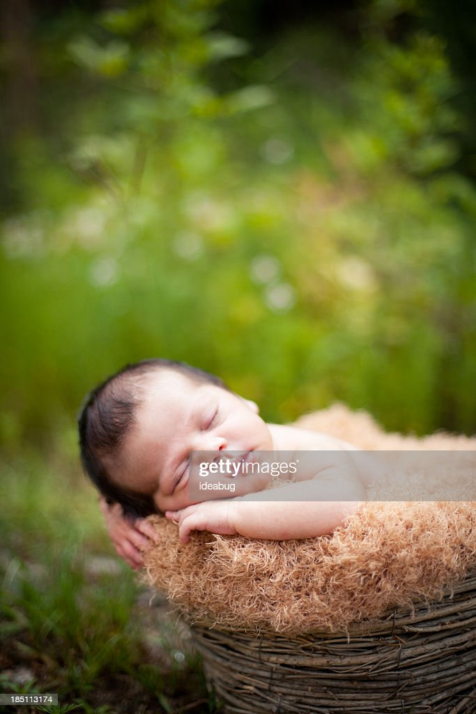 'Newborn Baby Sleeping Peacefully Outdoors, in Basket, With Copy' : Stock Photo