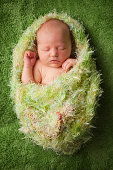 Newborn Baby Wrapped in Fuzzy Blanket