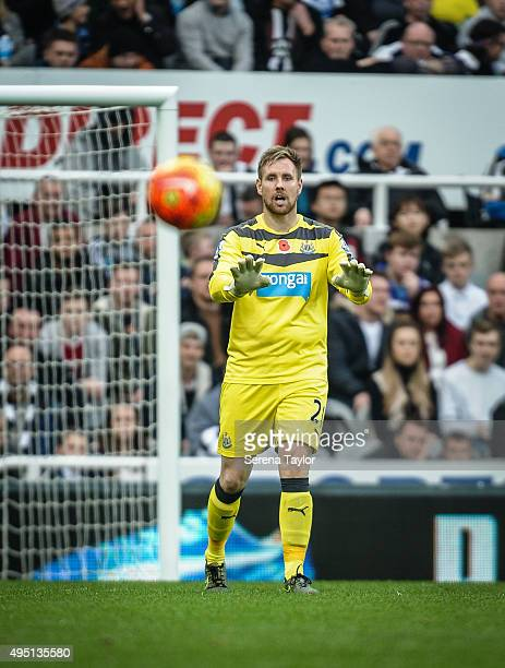 Newcastle Goalkeeper Rob Elliot gestures with his hands during the Barclays Premier League match between Newcastle United and Stoke City at StJames'...