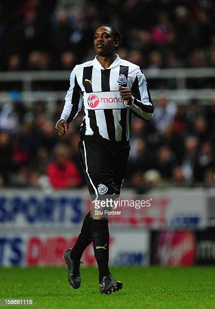 Newcastle player Nile Ranger in action during the Barclays Premier League match between Newcastle United and Everton at St James' Park on January 2...