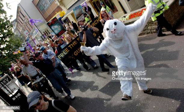 'Newchurch Victory Gathering' Animal rights protesters who campaigned against a farm that breeds guinea pigs for medical research march through...