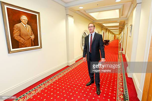 Newly appointed Labour leader Andrew Little poses after a press conference at Parliament House on November 18 2014 in Wellington New Zealand The 2014...