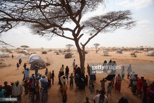 Newly arrived Somalian refugees queue for tents being distributed by the Lutheran World Federation charity on the edge of the Dagahaley refugee camp...