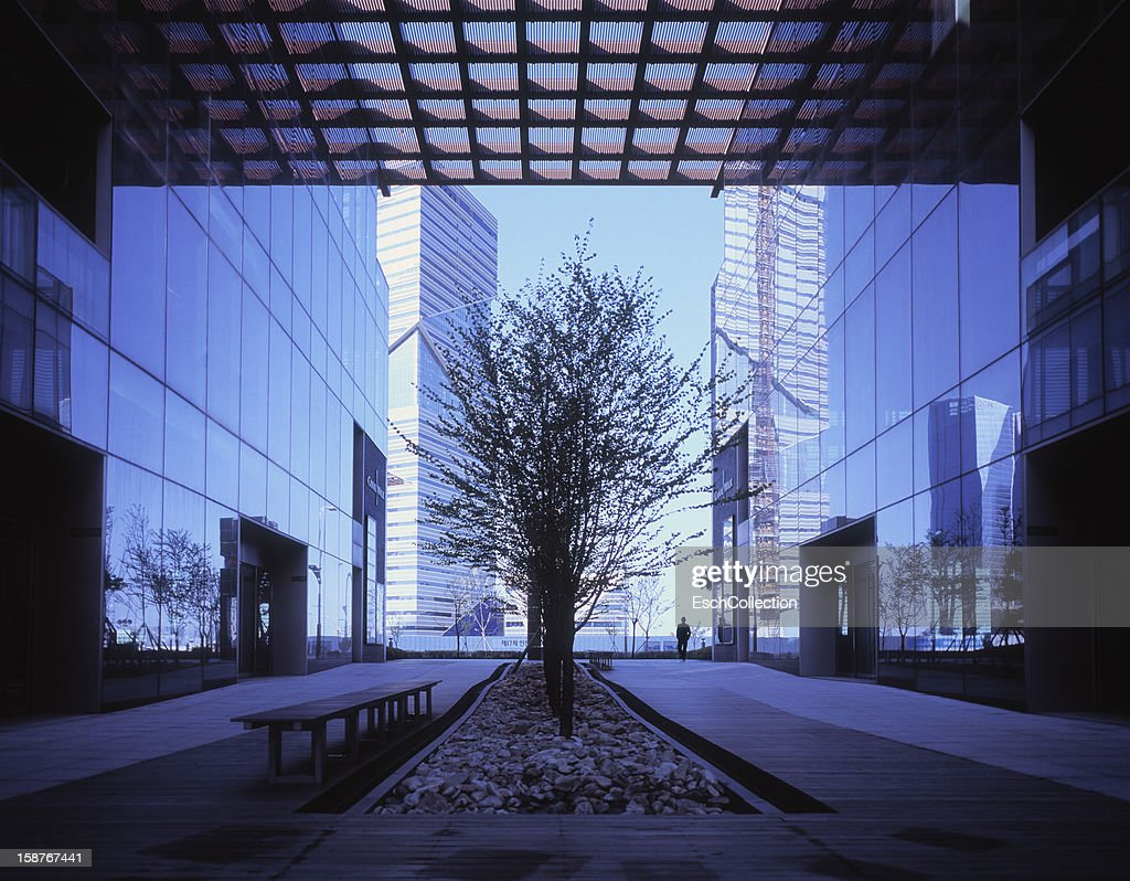 Newly built modern office buildings at dawn : Stock Photo