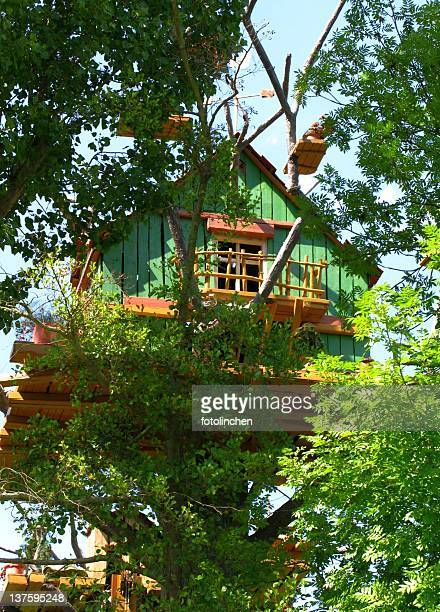 A newly built wooden green tree house on top of the trees