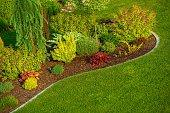 Newly Designed Garden Closeup Photo. Backyard Garden.