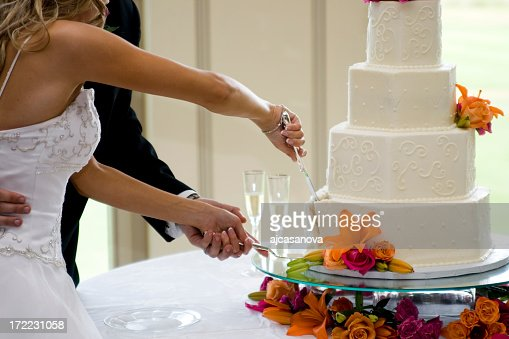 Newly-married couple cutting wedding cake together