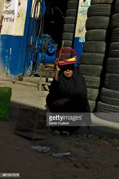 Next to a stack of used car tires a unidentified woman sits with a caged budgerigar on her head Alexandria Egypt December 4 2009