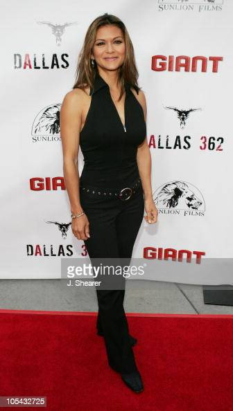 Nia Peeples during 'Dallas 362' Los Angeles Premiere Arrivals at The ArcLight in Hollywood California United States