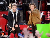 Niall Horan and Harry Styles of One Direction perform at Rumsey Playfield on November 26 2013 in New York City