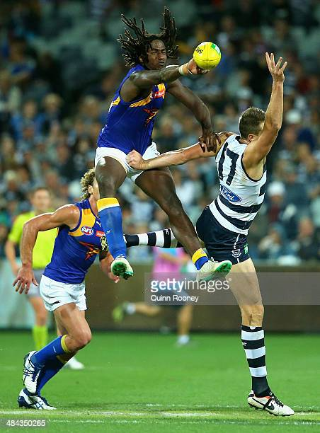 Nic Naitanui of the Eagles competes in the ruck against Hamish McIntosh of the Cats during the round four AFL match between the Geelong Cats and the...