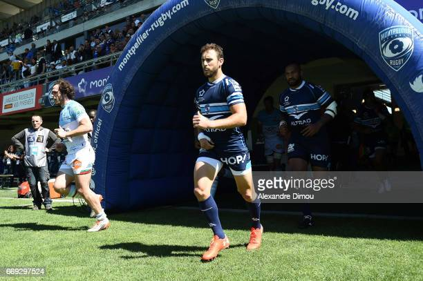 Nic White of Montpellier during the Top 14 match between Montpellier and Bayonne on April 16 2017 in Montpellier France