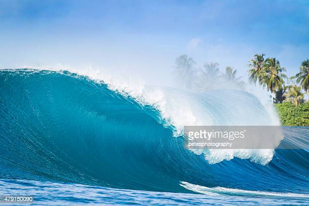Nice Big Wave in Indonesia