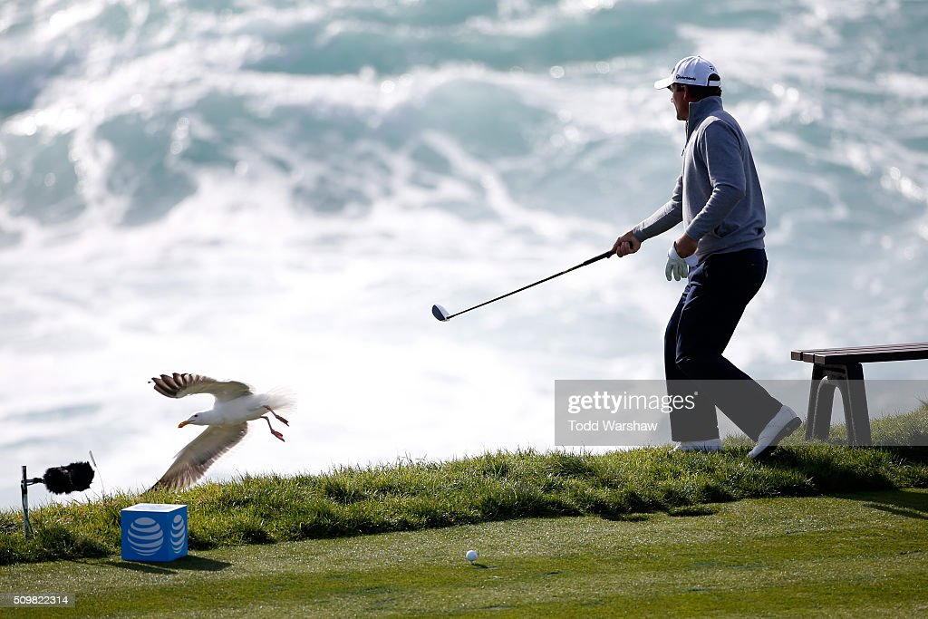 <a gi-track='captionPersonalityLinkClicked' href=/galleries/search?phrase=Nicholas+Thompson+-+Golfer&family=editorial&specificpeople=7179524 ng-click='$event.stopPropagation()'>Nicholas Thompson</a> chases away a seagull on the seventh hole during the second round of the AT&T Pebble Beach National Pro-Am at the Pebble Beach Golf Links on February 12, 2016 in Pebble Beach, California.