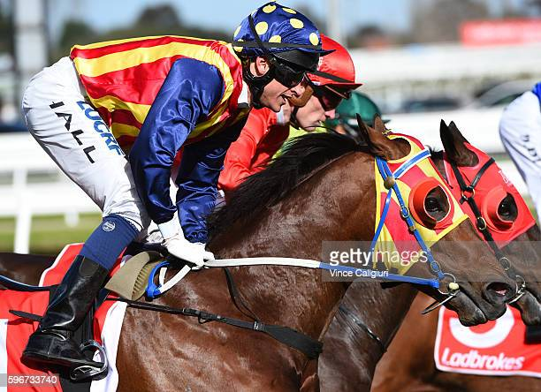 Nick Hall riding Under the Louvre finishing 2nd in Race 5 The Resimax Stakes during Melbourne Racing at Caulfield Racecourse on August 27 2016 in...