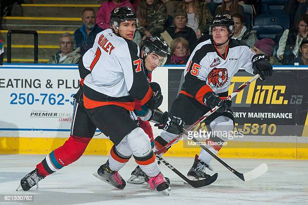 Nick Merkley of the Kelowna Rockets looks for the pass between Ty Schultz and Matt Bradley of the Medicine Hat Tigers during the third period at...