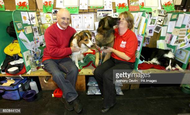 Nick Moran and Jane Moran pose with their dogs Noah a Border Collie and William a Belgian Shepheard at Crufts Birmingham
