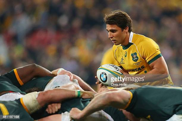 Nick Phipps of the Wallabies prepares for a scrum during The Rugby Championship match between the Australian Wallabies and the South Africa...