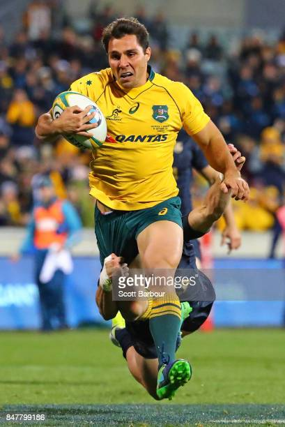 Nick Phipps of the Wallabies runs in to score a try during The Rugby Championship match between the Australian Wallabies and the Argentina Pumas at...