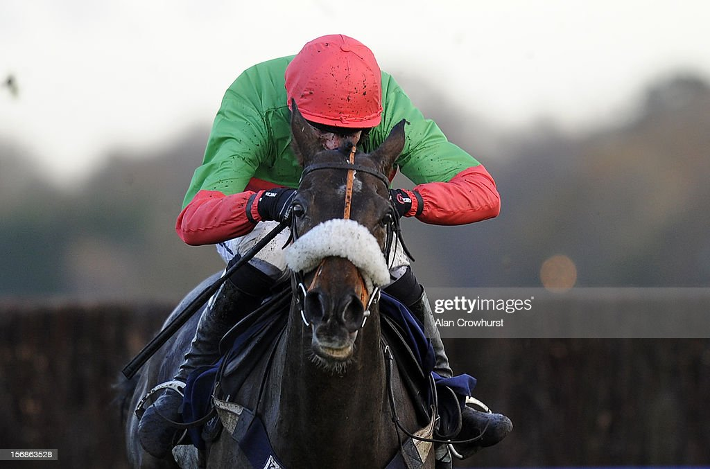 Nick Schofield riding The Rainbow Hunter clear the last to win The Mitie Events & Leisure Handicap Steeple Chase from Loch Ba at Ascot racecourse on November 23, 2012 in Ascot, England.
