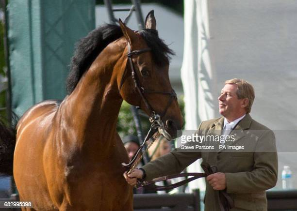 CROP Nick Skelton walks his horse Big Star around the arena as they retire at the Royal Windsor Horse Show which is held in the grounds of Windsor...