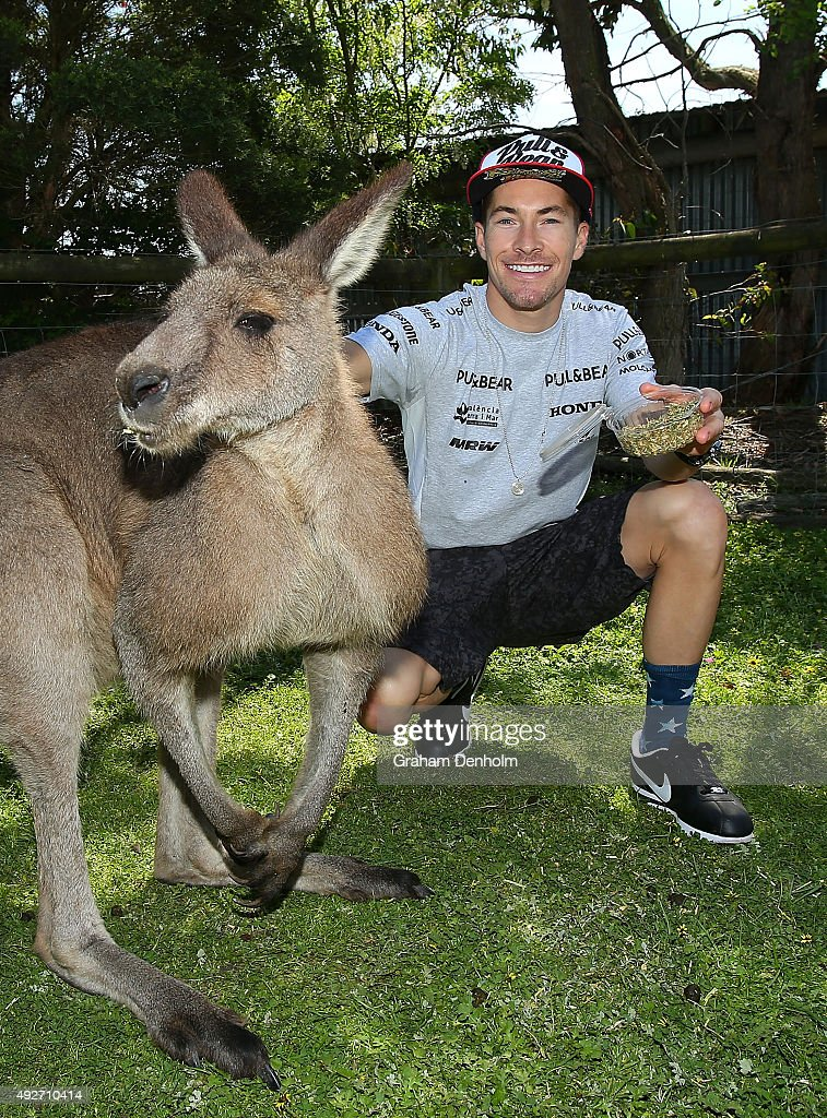 <a gi-track='captionPersonalityLinkClicked' href=/galleries/search?phrase=Nicky+Hayden&family=editorial&specificpeople=227346 ng-click='$event.stopPropagation()'>Nicky Hayden</a> of USA and Drive M7 Aspar feeds a kangaroo ahead of the 2015 MotoGP of Australia at Phillip Island Grand Prix Circuit on October 15, 2015 in Phillip Island, Australia.