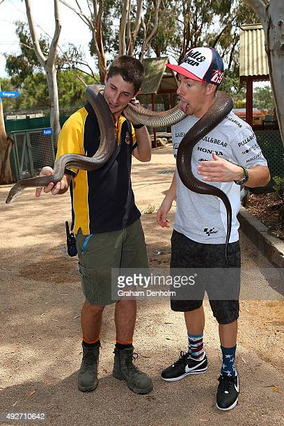 Nicky Hayden of USA and Drive M7 Aspar meets a large snake at an animal park ahead of the 2015 MotoGP of Australia at Phillip Island Grand Prix...