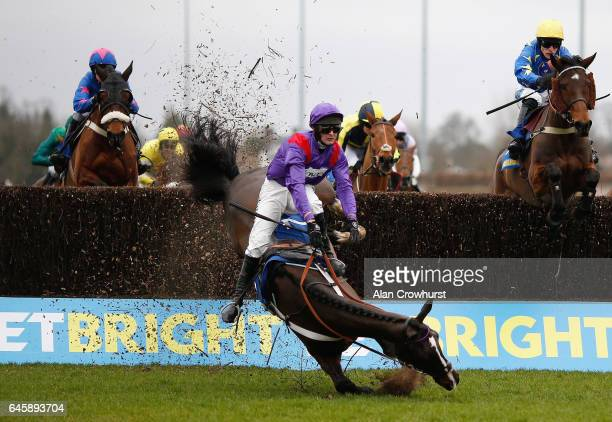 Nico de Boinville riding Cocktails At Dawn fall during The BetBright Handicap Steeple Chase at Kempton Park on February 25 2017 in Sunbury England