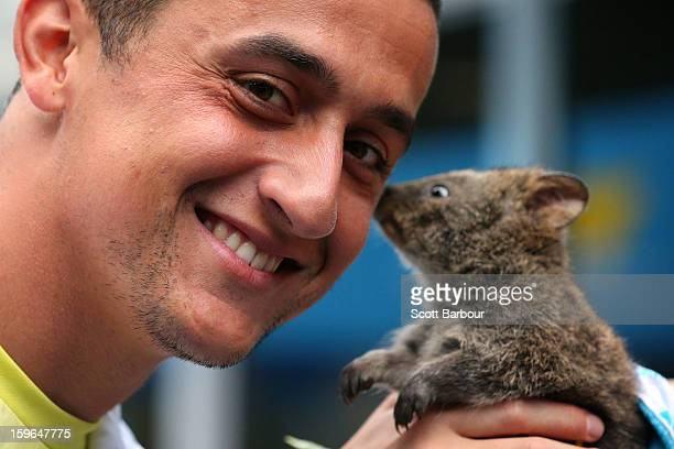 Nicolas Almagro of Spain holds a baby wombat on day five of the 2013 Australian Open at Melbourne Park on January 18 2013 in Melbourne Australia