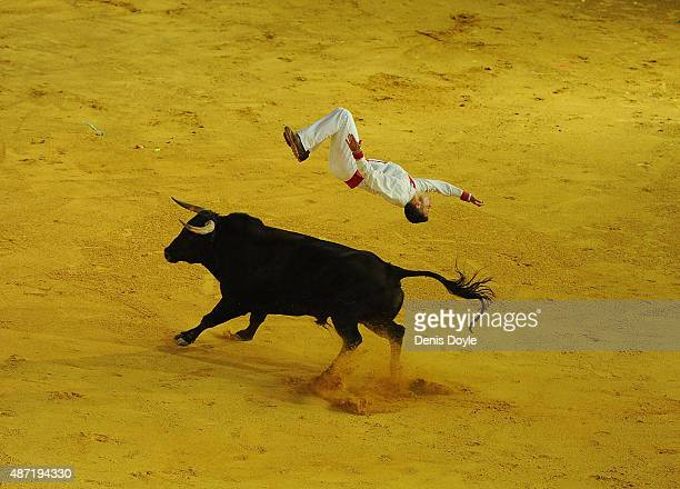 Nicolas Vergonzeanne of the French Recortadores company Passion Saltador somersaults over a charging bull at the end of the Liga de Corte Puro finals...