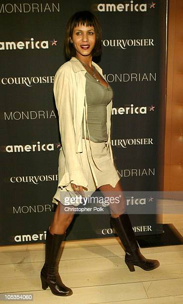 Nicole Ari Parker during America Magazine Launch Party Arrivals at Skybar at Mondrian in Hollywood California United States