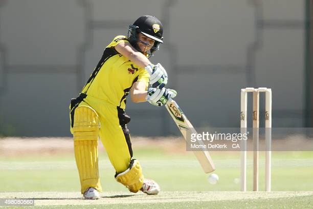 Nicole Bolton of the Fury bats during the WNCL match between Tasmania and Western Australia at Park 25 on November 21 2015 in Adelaide Australia