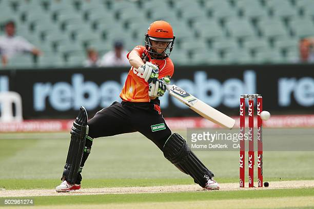 Nicole Bolton of the Perth Scorchers bats during the Women's Big Bash League match between the Adelaide Strikers and the Perth Scorchers at Adelaide...