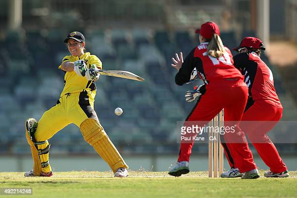 Nicole Bolton of Western Australia bats during the round one WNCL match between Western Australia and South Australia at WACA on October 11 2015 in...