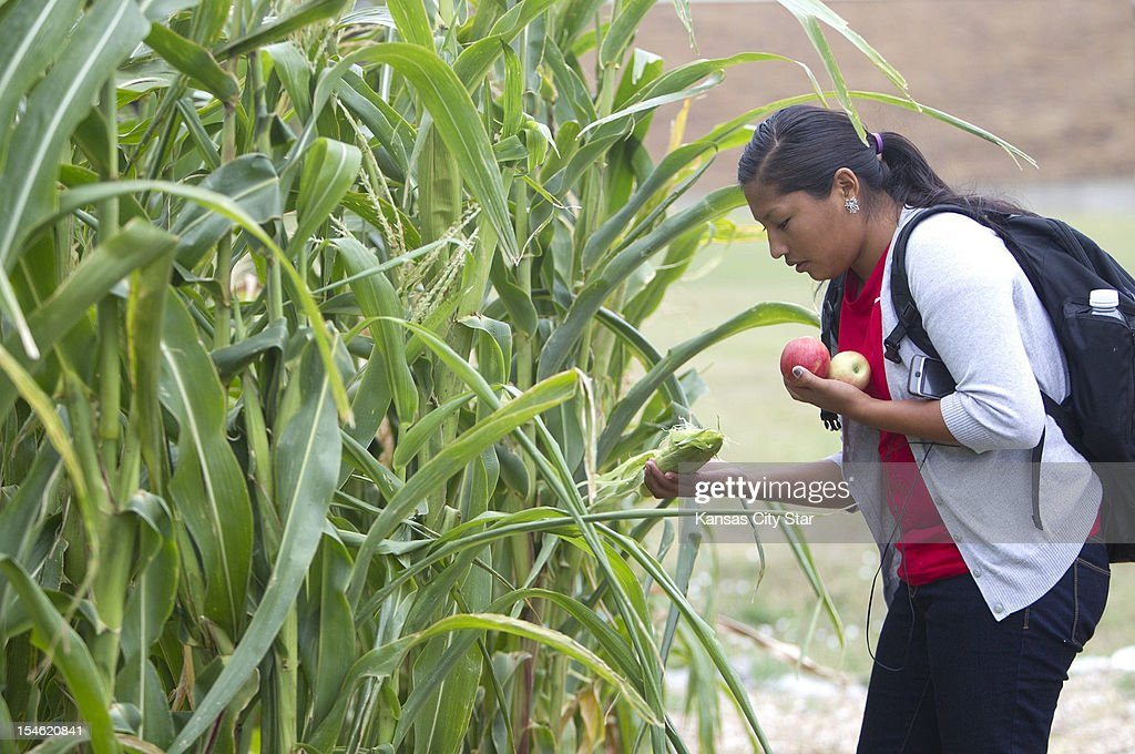 Nicole Macias, a member of the Navajo tribe from New Mexico, looks over corn growing in the garden at Haskell Indian Nations University in Lawrence, Kansas.