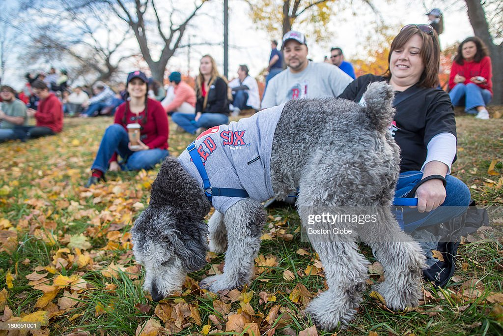 Nicole Mullen, of Roslindale, sat with her dog Czar, wearing a red sox shirt, as Duck Boats carrying Red Sox players cruised past the Esplanade during the Rolling Rally duck boat parade to celebrate the Boston Red Sox's World Series victory on Saturday, Nov. 2, 2013.