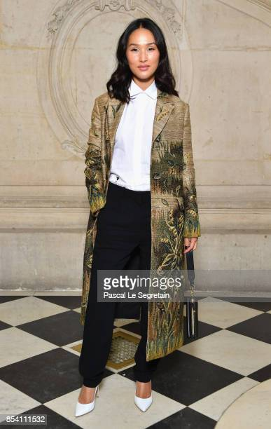 Nicole Warne attends the Christian Dior show as part of the Paris Fashion Week Womenswear Spring/Summer 2018 on September 26 2017 in Paris France
