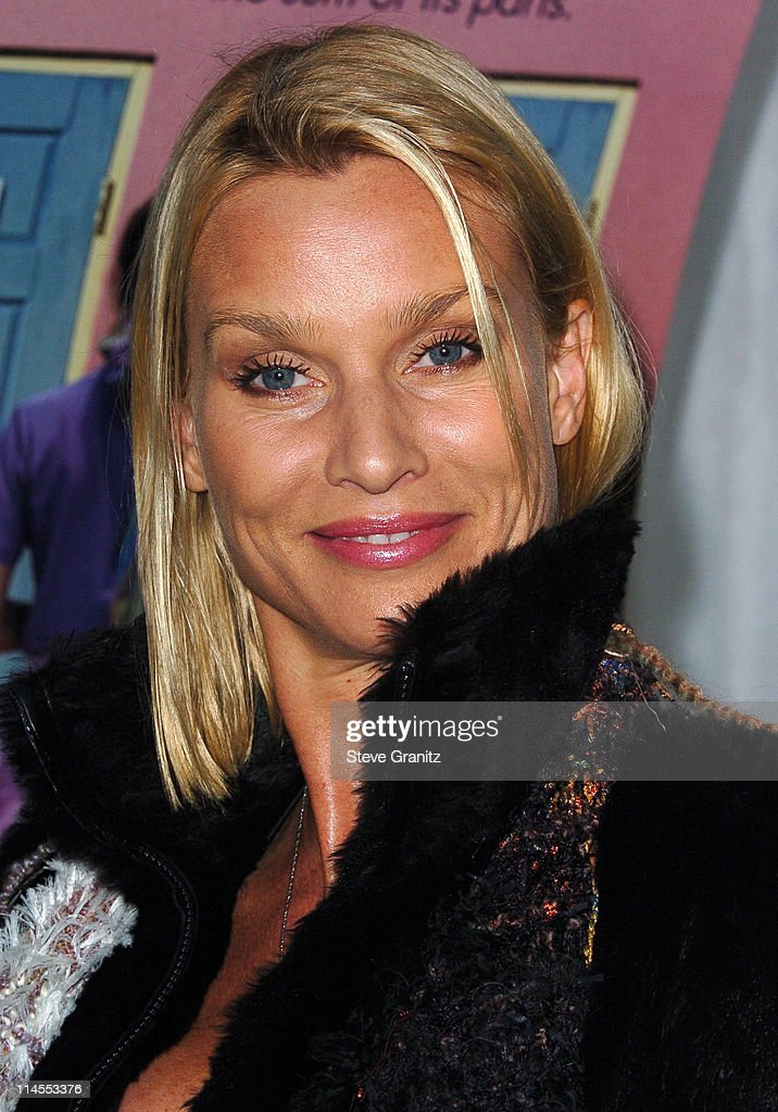 Nicollette Sheridan during AFI Fest 2005 Screening of 'Transamerica' Arrivals at Arclight Hollywood Cinerama Dome in Hollywood California United...