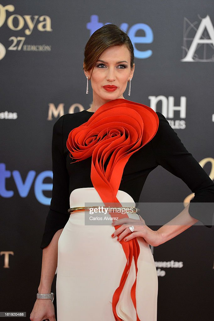 Nieves Alvarez attends Goya Cinema Awards 2013 at Centro de Congresos Principe Felipe on February 17, 2013 in Madrid, Spain.